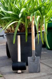 plantensplit set